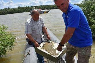 Danube Day 2019 in Ukraine